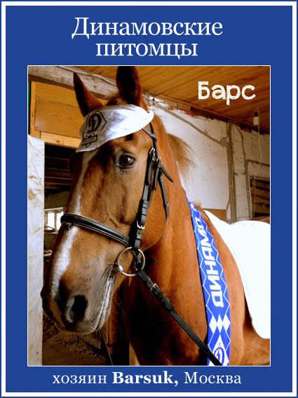Динамовская лошадь